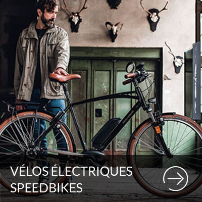 vélos-electriques-speedbikes-paris-cyclistes-branches