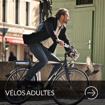 velos-adultes-paris-cyclistes-branches