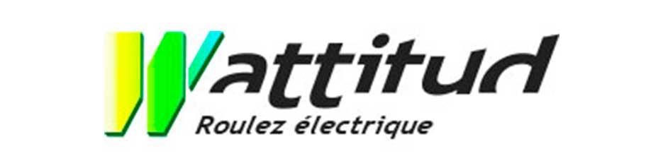les-cyclistes-branches-paris-92-wattitud-velo-electrique